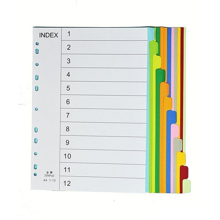A4 1-10彩色纸质插页/分页纸 文件索引分页(10页/本)