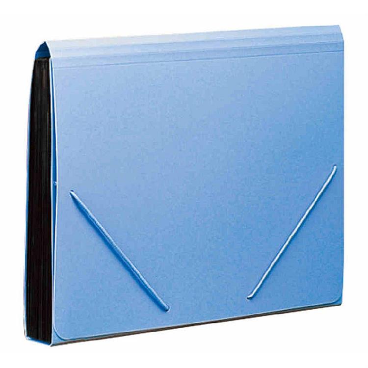 齐心F4302风琴包易分类 松紧带式风琴包,A4,12格(个)