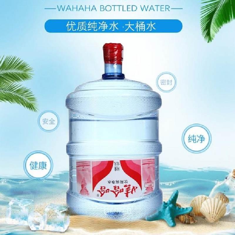 娃哈哈 桶装纯净水 18.9L (桶)
