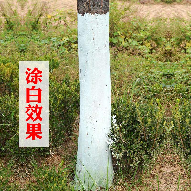 鸿和源 涂白剂 防虫防冻 20KG(桶)