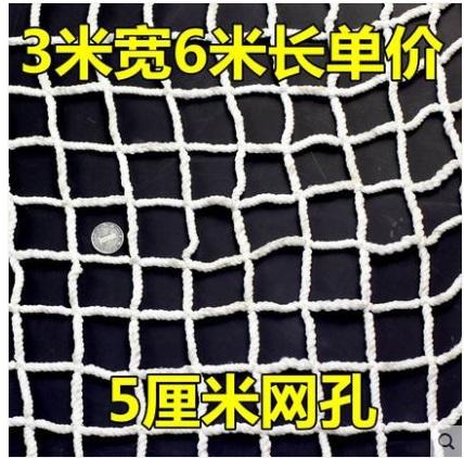 防坠网建筑安全网工地防护网尼龙防落网阻燃网儿童防坠绳网 5厘米网孔3米X6米单价(套)